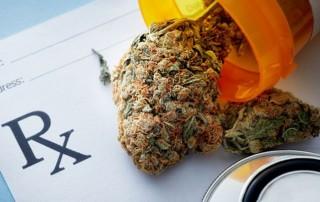 Should You Use Medical Marijuana, AKA Medical Cannabis, if You Have Cancer?