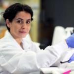 Diet, gut microbes affect effectiveness of cancer treatment, research reveals